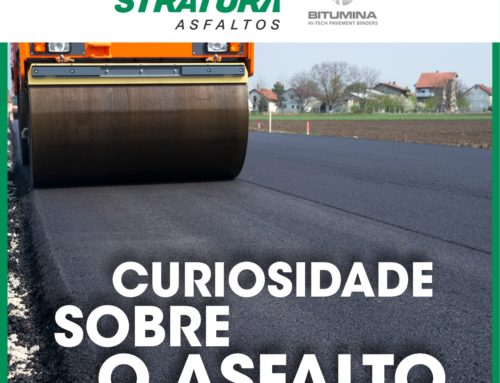Curiosity about the asphalt